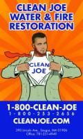 CleanJoe-3x5r1-180x300