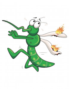 MosquitoAllianceLeagueLogo